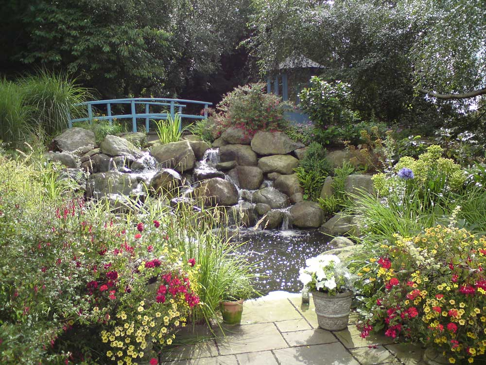 Water feature planting