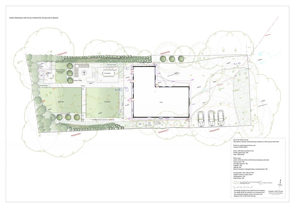 Mr & Mrs Lincoln Masterplan & Survey overlay 19.01.19 copy